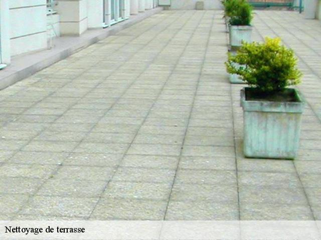 nettoyage terrasse entretien des terrasses en bois resineux et exotiques nettoyage complet de. Black Bedroom Furniture Sets. Home Design Ideas